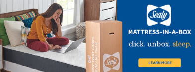 Sealy Mattress in a Box
